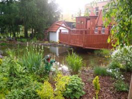 Okrasné jezírko v prostoru zahrady 55. mateřské školy v Plzni