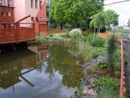 Okrasné jezírko v zahradě 55. mateřské školy v Plzni
